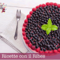 ricette ribes